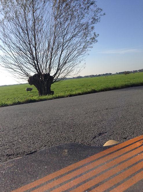 uitzicht longboard