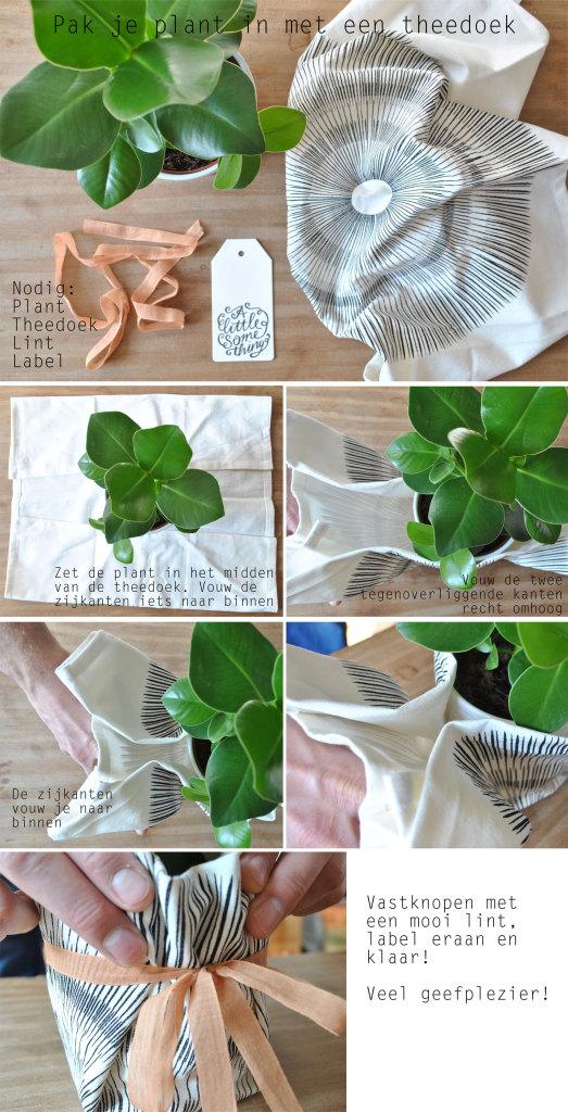 Pak je plant in met een theedoek