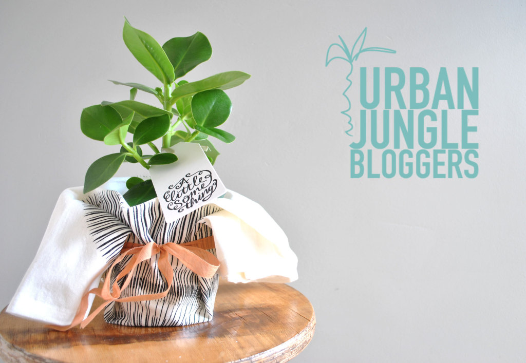 Urban Jungle Bloggers door Imke Verhoef