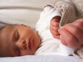 Baby Mees, foto Imke Verhoef